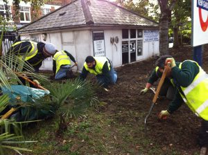Kew Gardens station planting prep 009